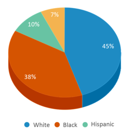 This chart display the percentage breakdown of students of all ethnic groups in Daisy Elementary School.