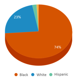 This chart display the percentage breakdown of students of all ethnic groups in Hunter-kinard-tyler Elementary School.