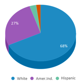 This chart display the percentage breakdown of students of all ethnic groups in Wilmot Elementary - 02.