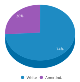 This chart display the percentage breakdown of students of all ethnic groups in Wilmot Junior High - 03.