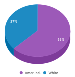 This chart display the percentage breakdown of students of all ethnic groups in O.k. Thollehaug Middle School.