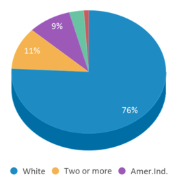 This chart display the percentage breakdown of students of all ethnic groups in Hot Springs Middle School - 06.