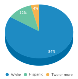 This chart display the percentage breakdown of students of all ethnic groups in Prospect Elementary School.