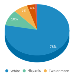 This chart display the percentage breakdown of students of all ethnic groups in Tusculum View Elementary School.