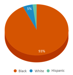 This chart display the percentage breakdown of students of all ethnic groups in Brainerd High School.