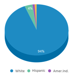 This chart display the percentage breakdown of students of all ethnic groups in Surgoinsville Elementary School.