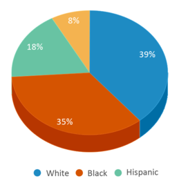 This chart display the percentage breakdown of students of all ethnic groups in Inskip Elementary School.