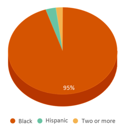 This chart display the percentage breakdown of students of all ethnic groups in Magnolia Elementary School.