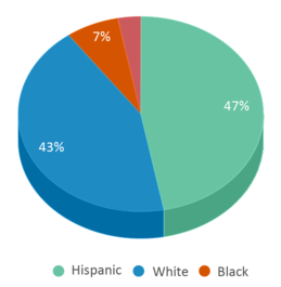 This chart display the percentage breakdown of students of all ethnic groups in Crockett Elementary School.