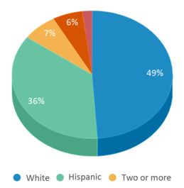 This chart display the percentage breakdown of students of all ethnic groups in Paul H. Cale Elementary School.