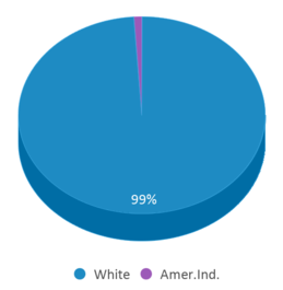 This chart display the percentage breakdown of students of all ethnic groups in Encampment High School.