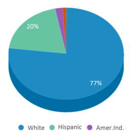 This chart display the percentage breakdown of students of all ethnic groups in Washington Elementary School.