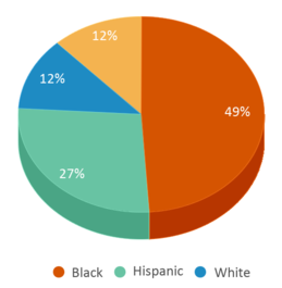 This chart display the percentage breakdown of students of all ethnic groups in Ark Community Charter School.