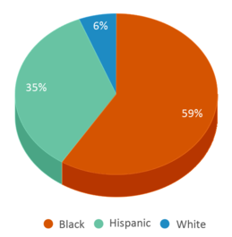 This chart display the percentage breakdown of students of all ethnic groups in Allen Res Center.