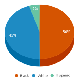 This chart display the percentage breakdown of students of all ethnic groups in Bowling Green Youth Academy.