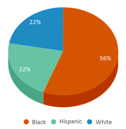 This chart display the percentage breakdown of students of all ethnic groups in Collins Correctional Fac.
