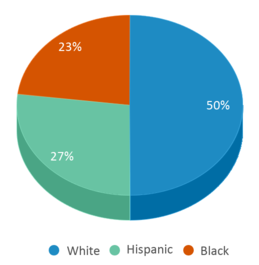 This chart display the percentage breakdown of students of all ethnic groups in Camp Comanche.