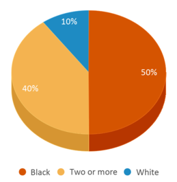 This chart display the percentage breakdown of students of all ethnic groups in Forcht Wade Correctional Center.