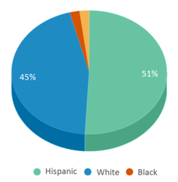 This chart display the percentage breakdown of students of all ethnic groups in Fennville Public High School.