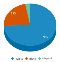 This chart display the percentage breakdown of students of all ethnic groups in Hutchings Child & Youth Svcs.