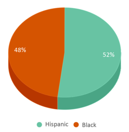 This chart display the percentage breakdown of students of all ethnic groups in Lifeline Education Charter School.