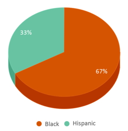 This chart display the percentage breakdown of students of all ethnic groups in Mid-hudson Psych Center.