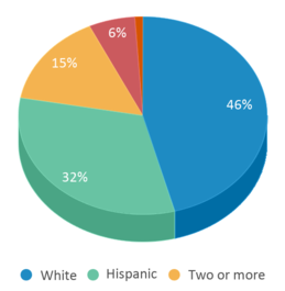 This chart display the percentage breakdown of students of all ethnic groups in San Diego Cooperative Charter.