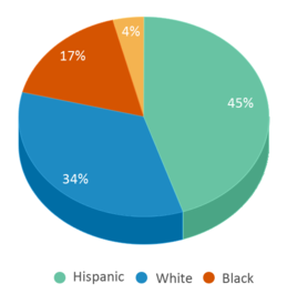 This chart display the percentage breakdown of students of all ethnic groups in South County Career Center.