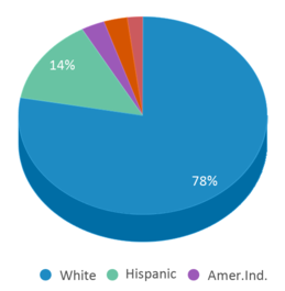 This chart display the percentage breakdown of students of all ethnic groups in Sandy Valley Middle School.