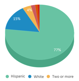 This chart display the percentage breakdown of students of all ethnic groups in Sparks Middle School.