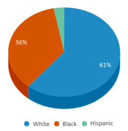 This chart display the percentage breakdown of students of all ethnic groups in Sagamore Children's Psych Center.