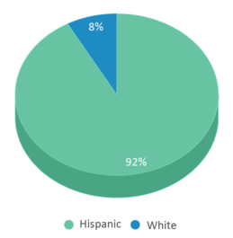 This chart display the percentage breakdown of students of all ethnic groups in Dr Lorenzo G Lafarelle Middle School.