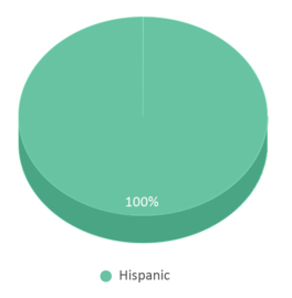This chart display the percentage breakdown of public school students of all ethnic groups in PR.