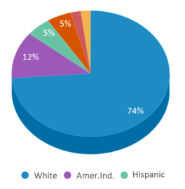 This chart display the percentage breakdown of public school students of all ethnic groups in ND.