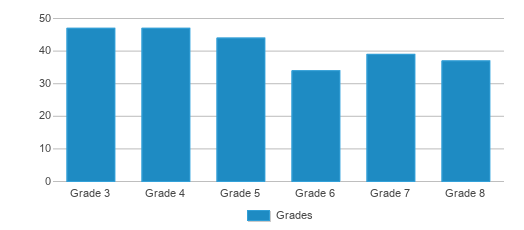 This chart display the students of Dayton Leadership Academies-dayton View Campus by grade.