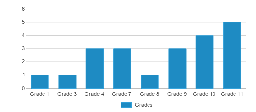 This chart display the students of Golden Eagle Digital Academy by grade.